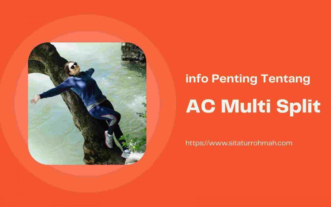 AC multi split
