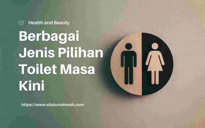 Beragam Pilihan Jenis Toilet Masa Kini